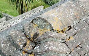 Roof Survey in Torbay Drone Survey